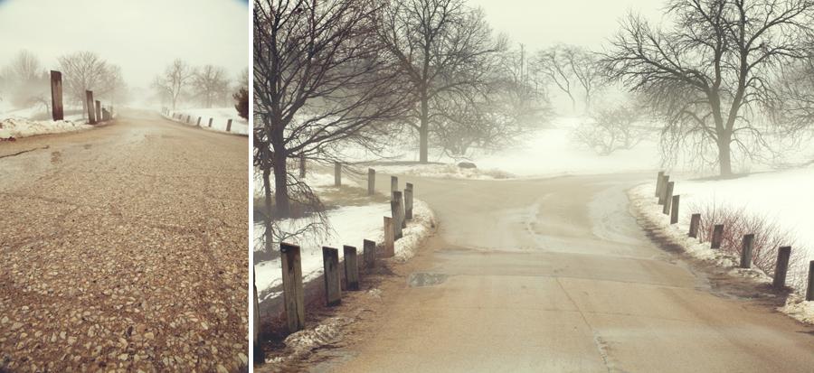 botanic-garden-fog-001.jpg