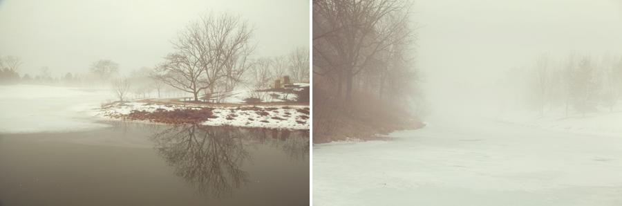 botanic-garden-fog-004.jpg