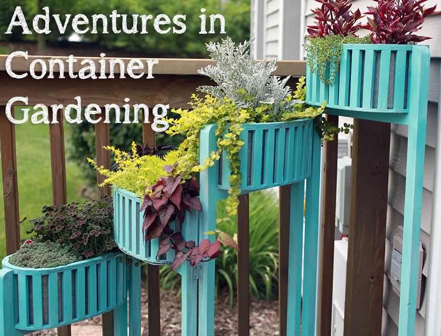 ContainerGardening-intro.jpg