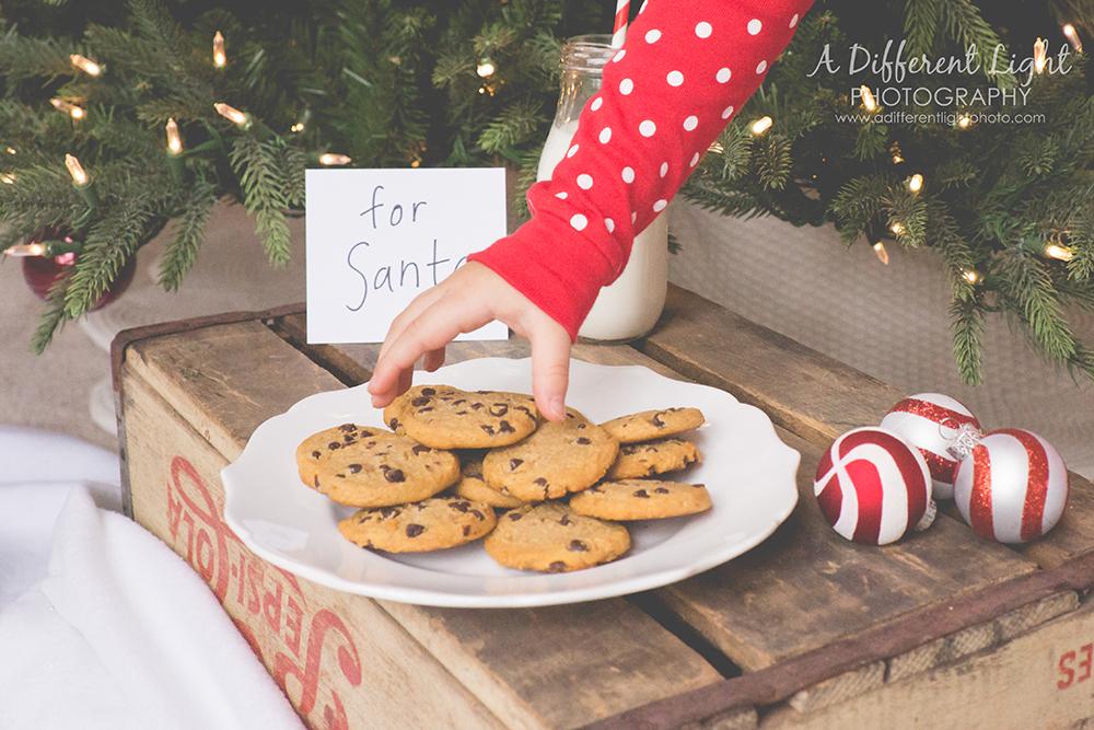 Christmas Eve Photo Shoot- Milk and Cookies for Santa