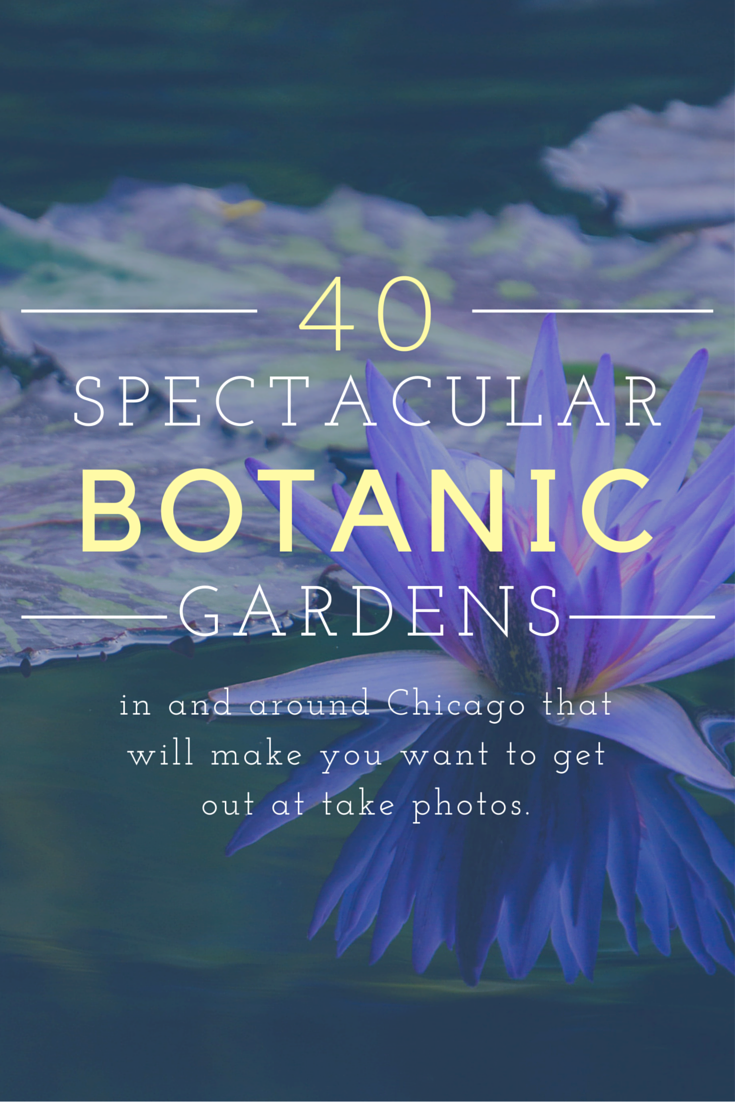 40 best botanic gardens in the chicago land area