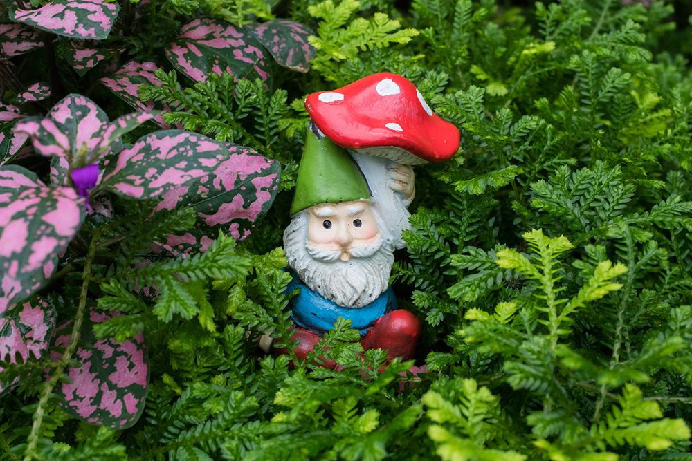 garden gnome under mushroom umbrella - april bern photography