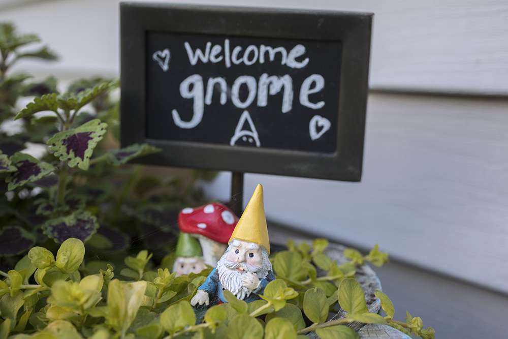 Welcome Gnome!