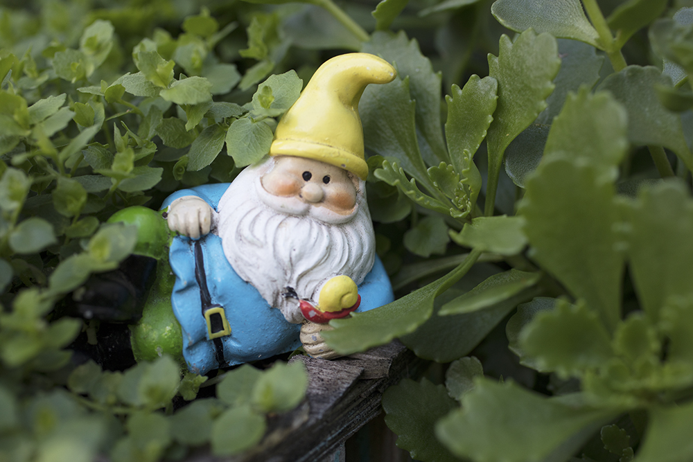 garden gnome chilling with a snail
