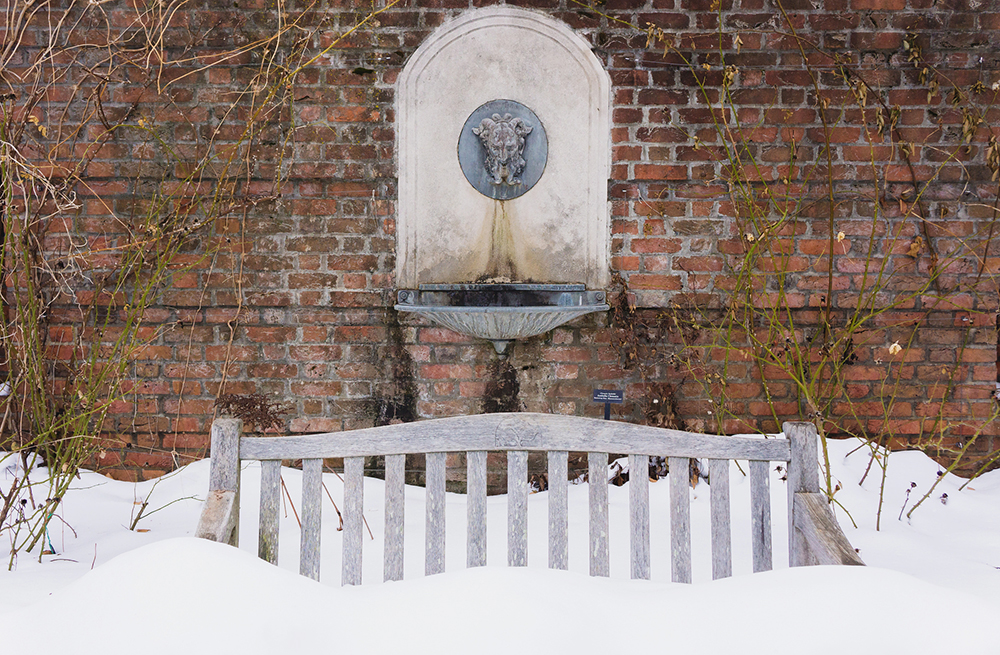 Snow at the Botanic Garden
