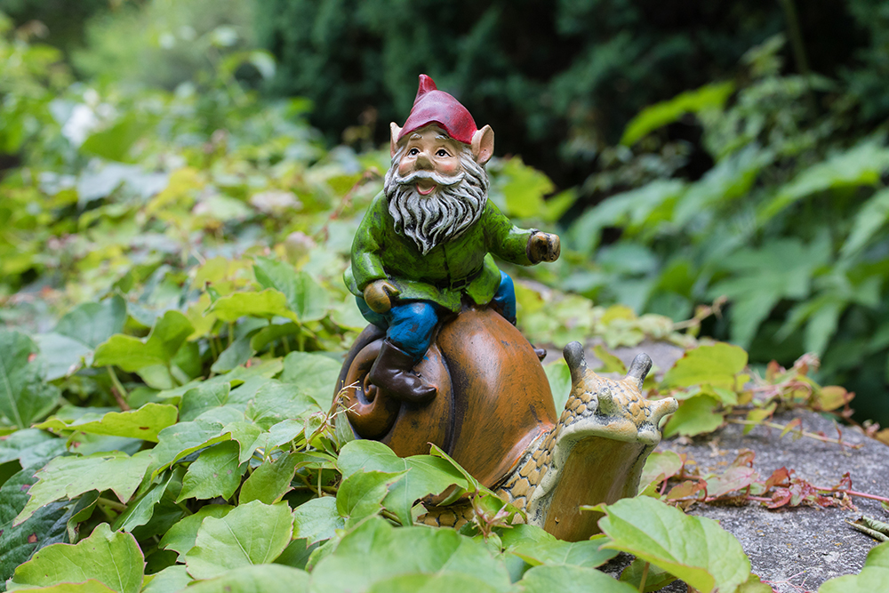gnome-snail-ride.jpg