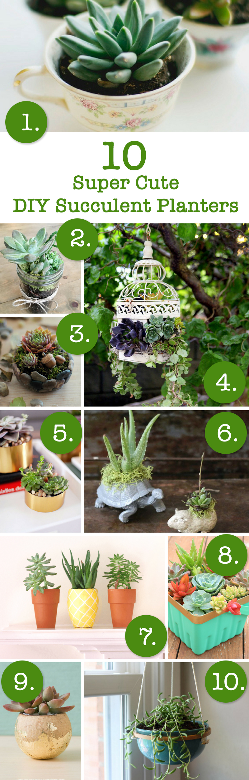 10 Super Cute Ways To Diy Succulent Planters April Bern