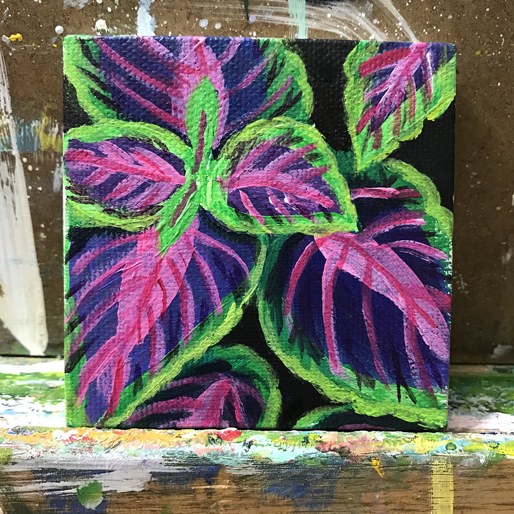 "83/100. Coleus. 3""x3"" acrylic on canvas."