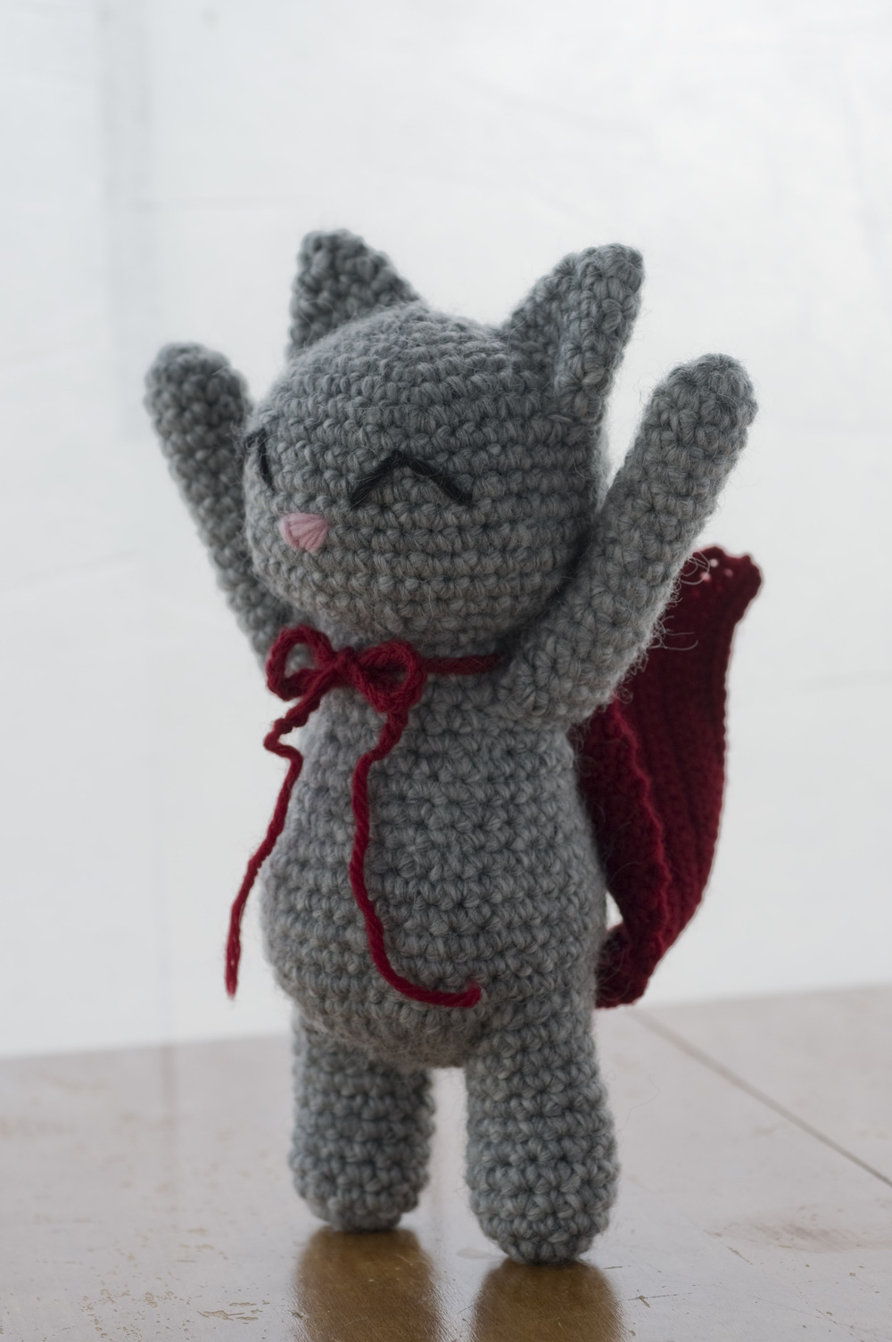 For some reason Bunny decided to crochet a cape for this cat.