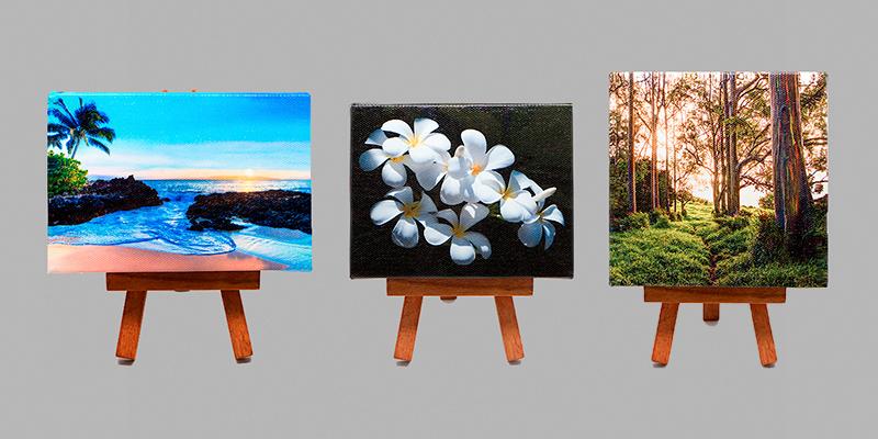 Maui J & M Photography's Maui Minis