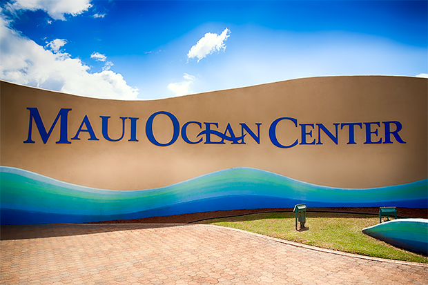 Maui Ocean Center, The Hawaiian Aquarium