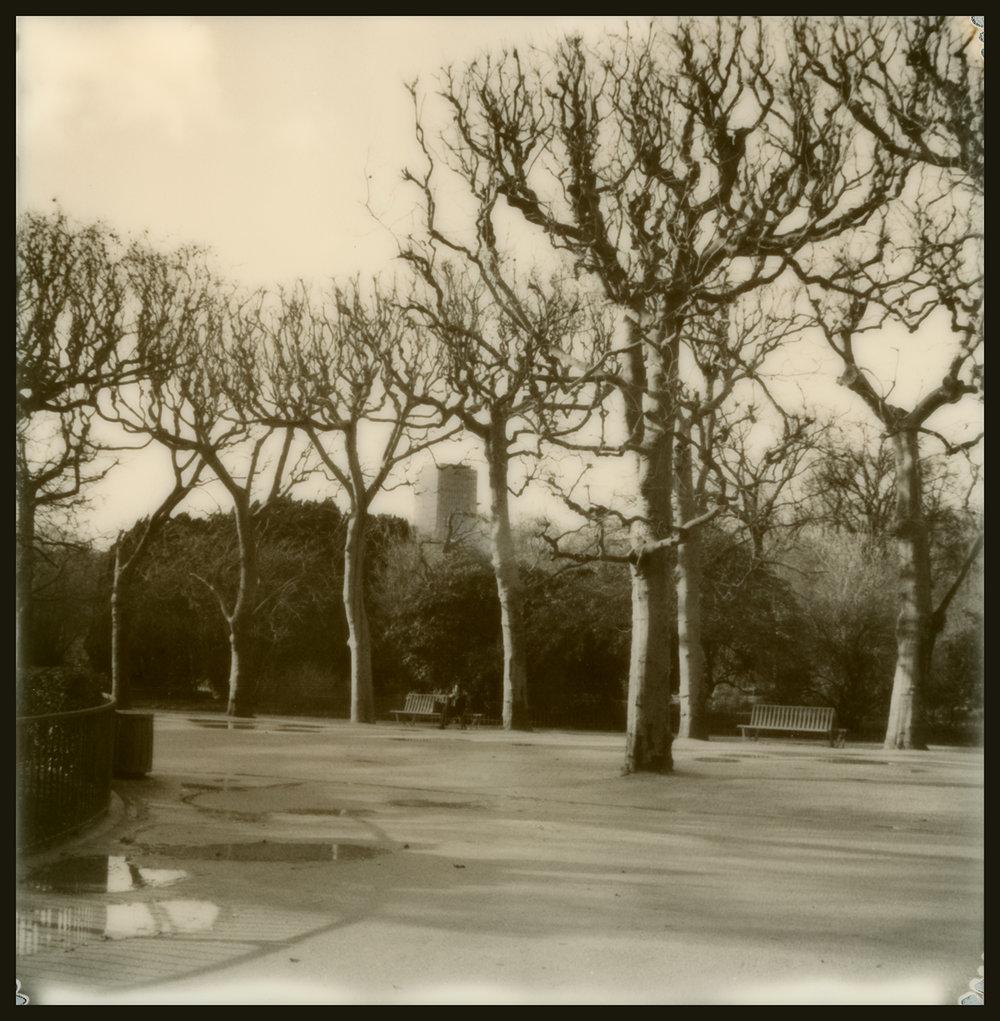 Jardin des Plantes_GOA.3.05.17.023.jpg