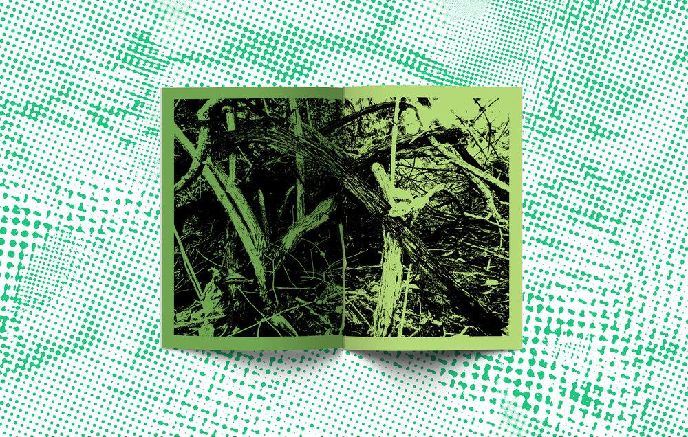 Green-spread_2.jpg