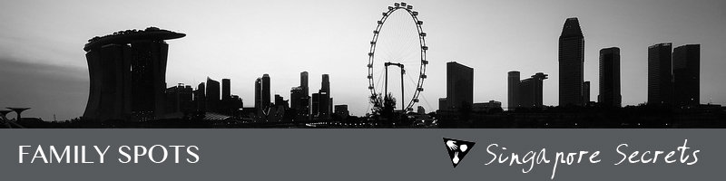 singaporecitysecretsfamilyspots.jpg