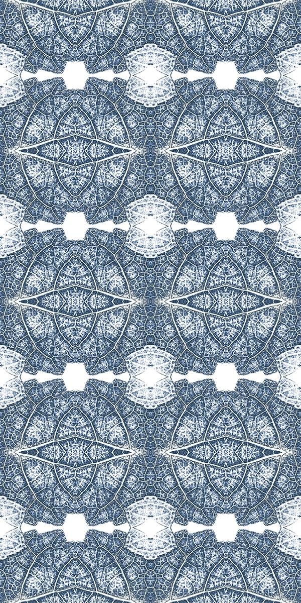 SYRAH, Blue Shale ©Karen Gearhart-Jensen relatingtonature.com