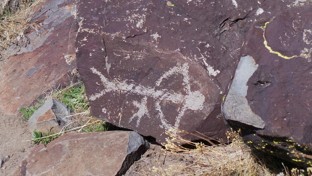 Lagomarsino Petroglyph Site 180.JPG