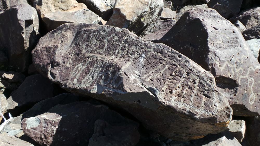 Lagomarsino Petroglyph Site 183.JPG