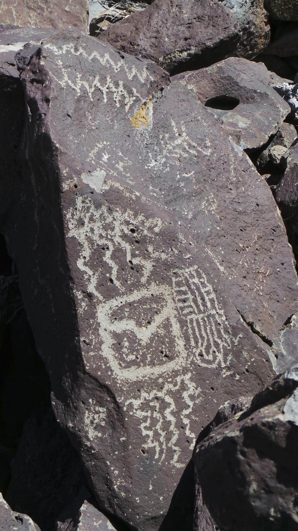 Lagomarsino Petroglyph Site 184.jpg