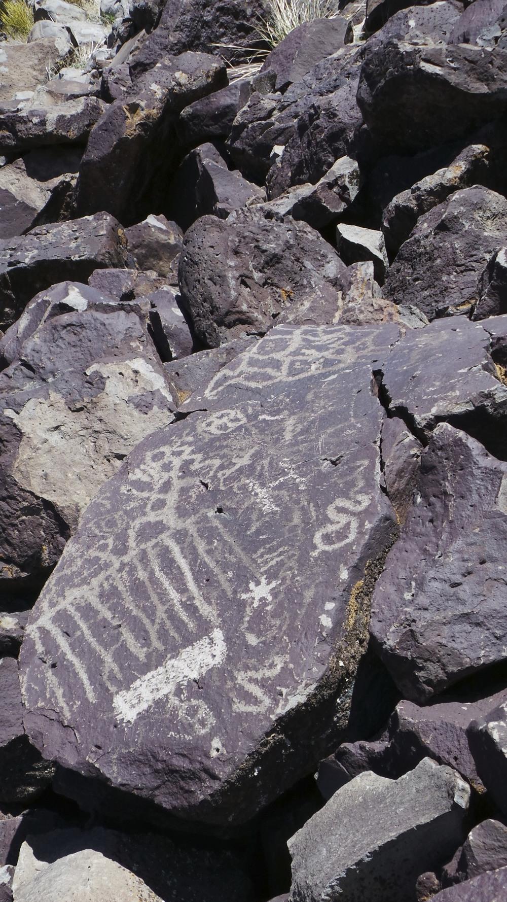 Lagomarsino Petroglyph Site 190.jpg