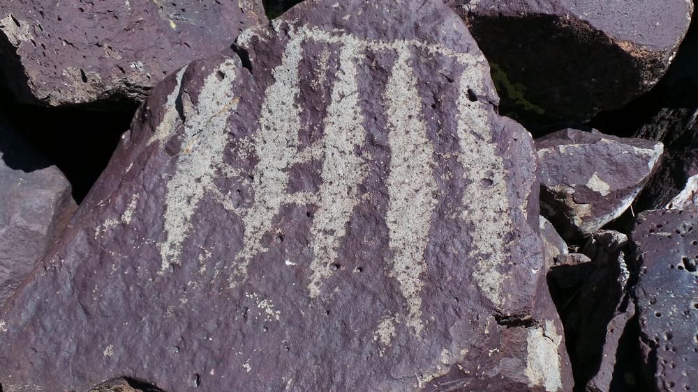 Lagomarsino Petroglyph Site 195.JPG