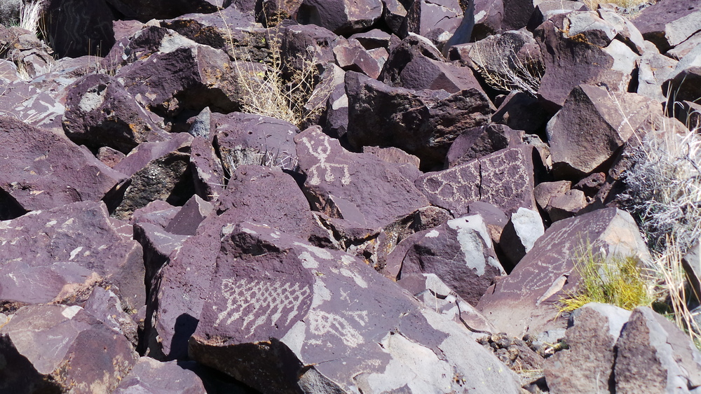 Lagomarsino Petroglyph Site 200.JPG