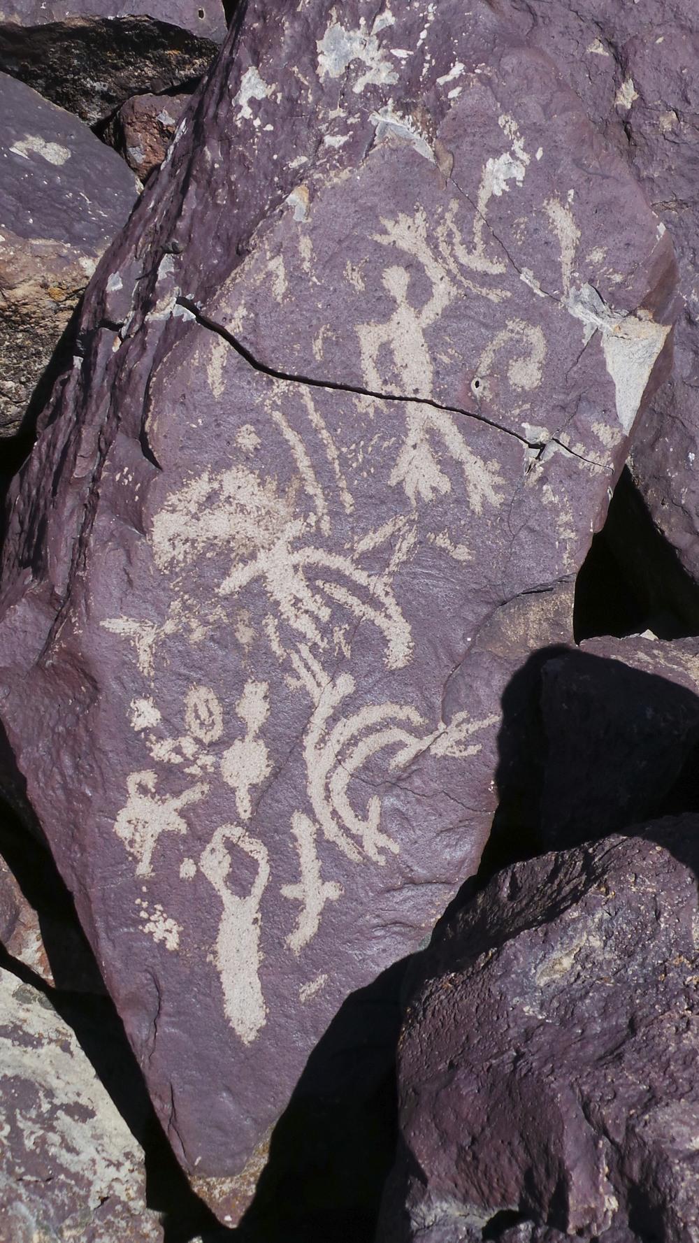 Lagomarsino Petroglyph Site 201.jpg