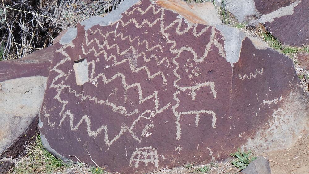 Lagomarsino Petroglyph Site 203.JPG