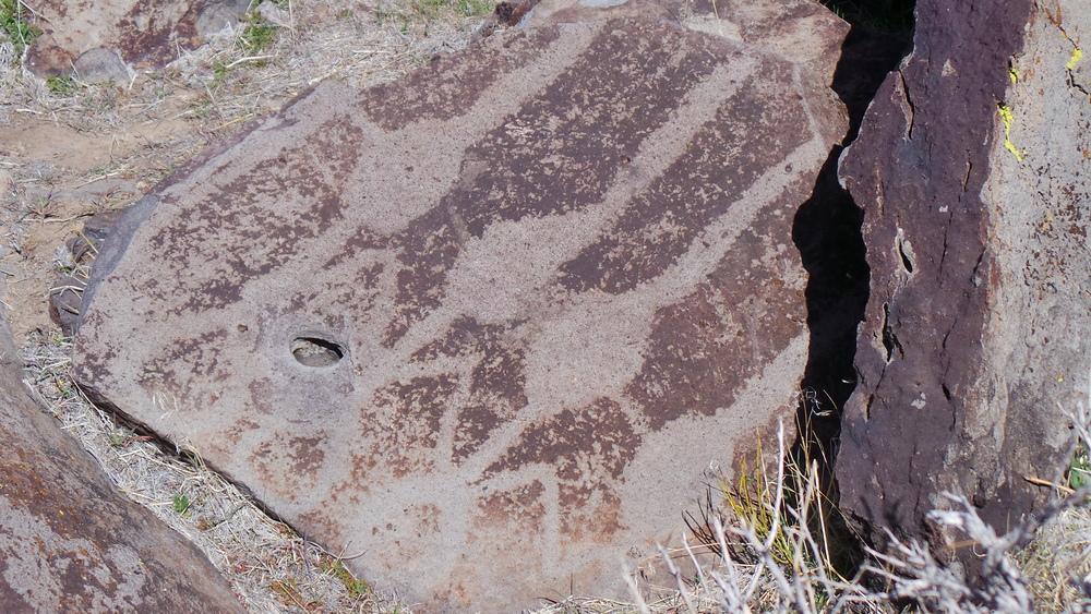 Lagomarsino Petroglyph Site 208.JPG