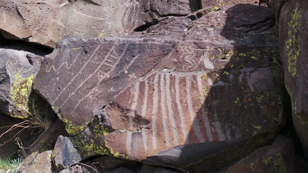 Lagomarsino Petroglyph Site 223.JPG