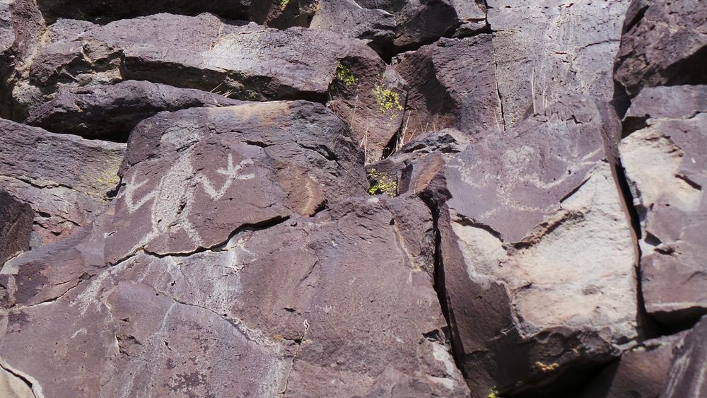 Lagomarsino Petroglyph Site 237.JPG