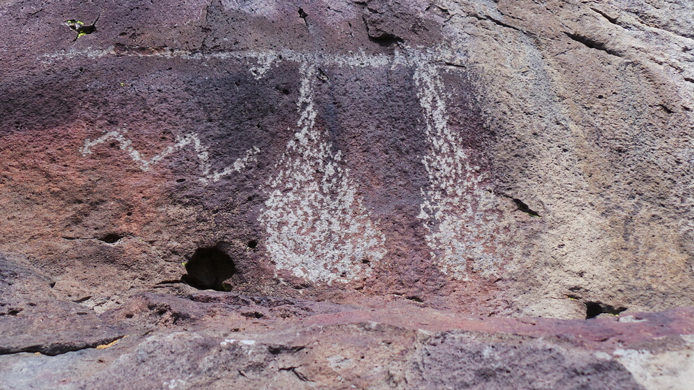 Lagomarsino Petroglyph Site 243.JPG