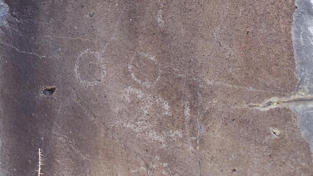 Lagomarsino Petroglyph Site 246.JPG