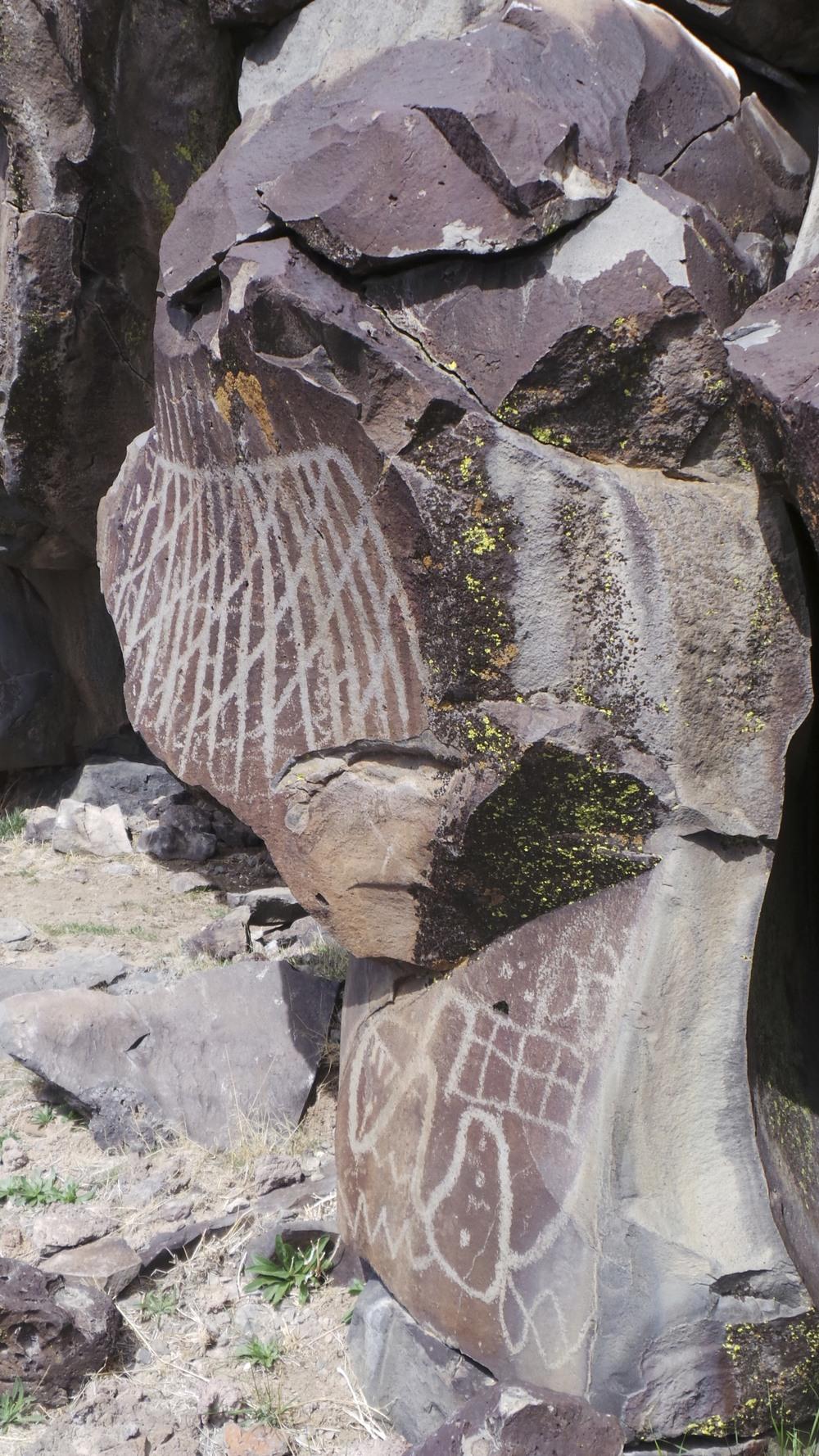 Lagomarsino Petroglyph Site 249.jpg