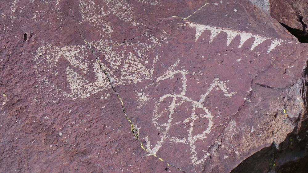 Lagomarsino Petroglyph Site 274.JPG