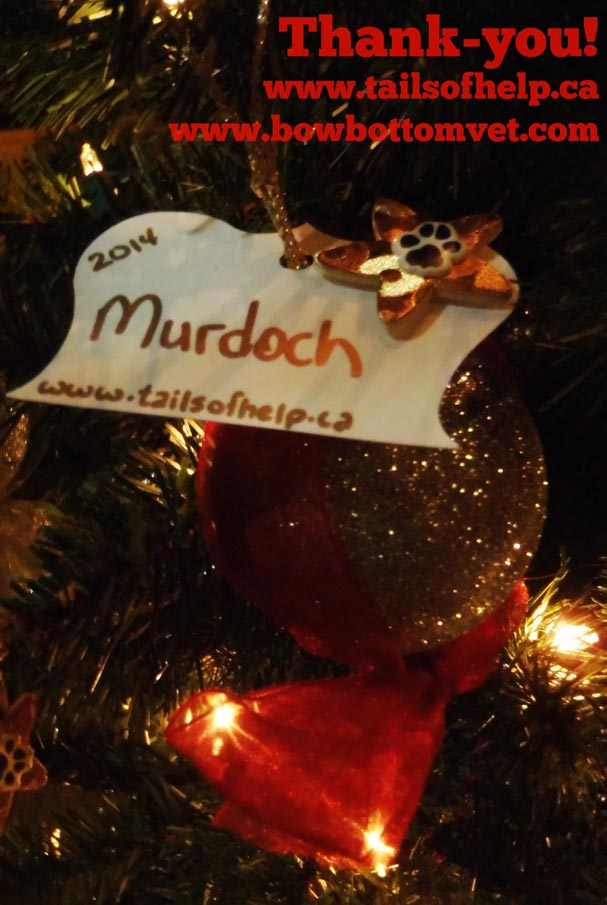 personalized Christmas ornaments at Bow Bottom Veterinary Hospital Holiday Fundraiser