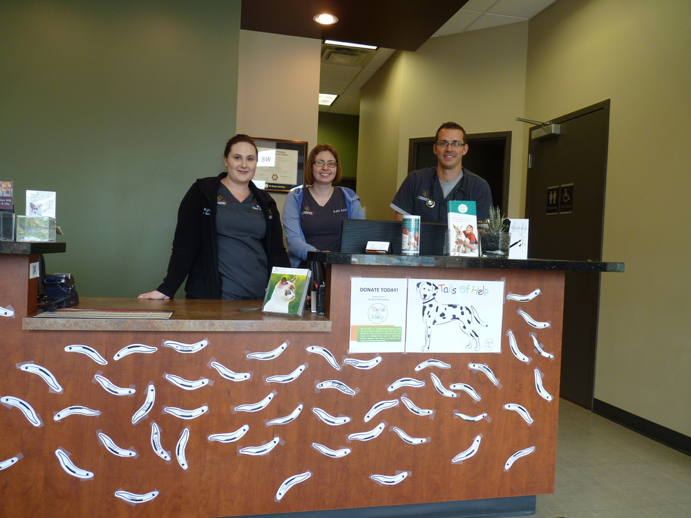 the 202 tails campaign starts spreads out at the companion veterinary hospital