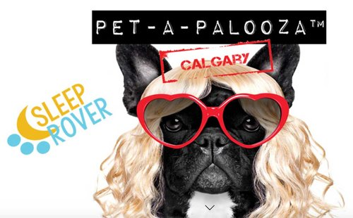 pet-a-palooza-2018-lg.jpg