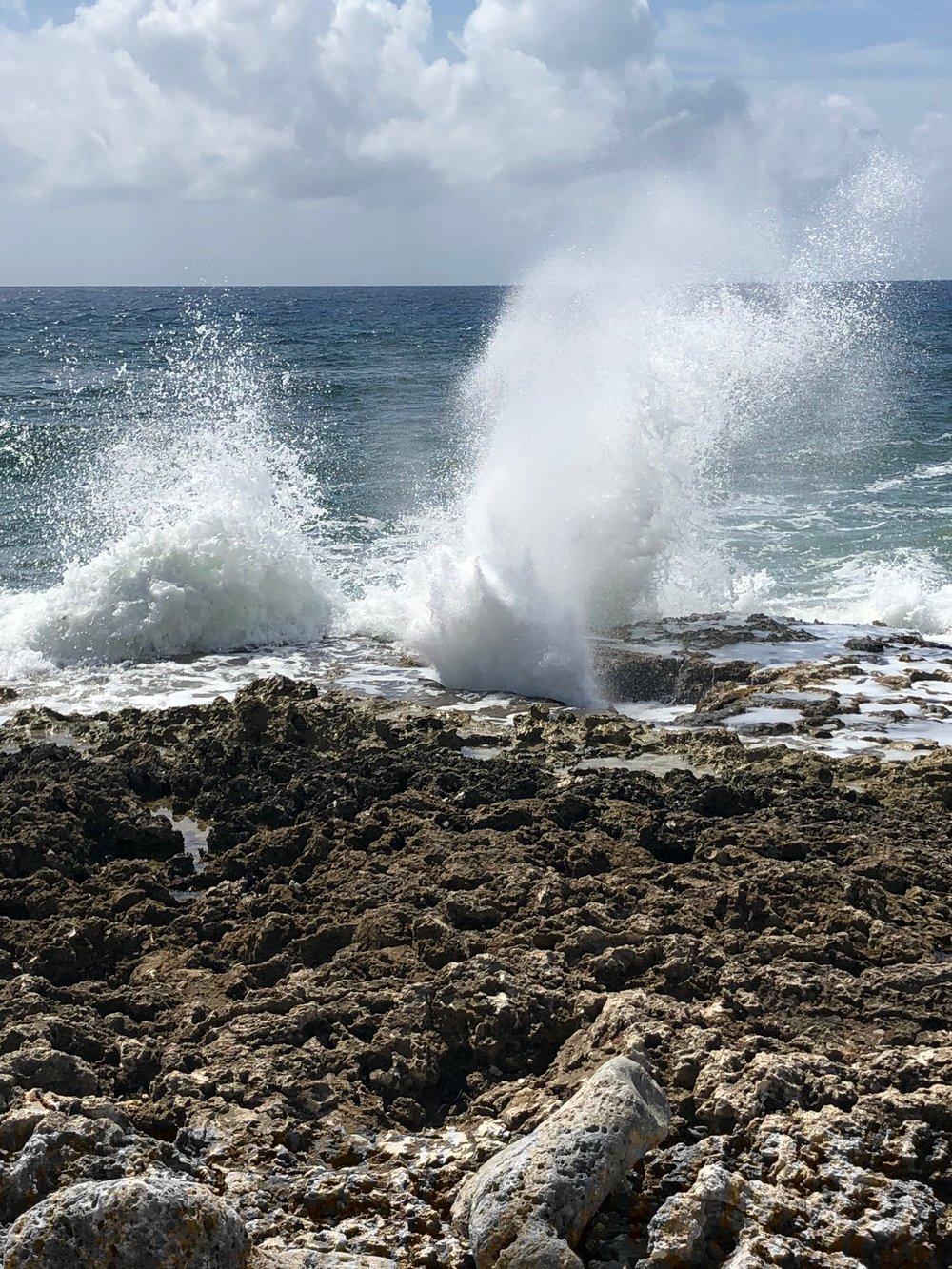 rocky-beach-oct-2018-IMG_5405.jpg