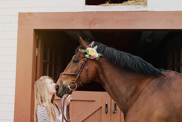 horse-stables-fonthill-041.jpg