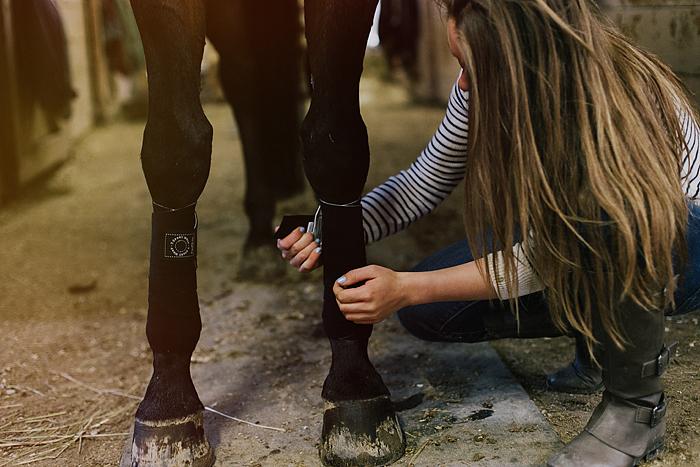horse-stables-fonthill-048.jpg