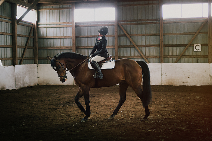 horse-stables-fonthill-079.jpg