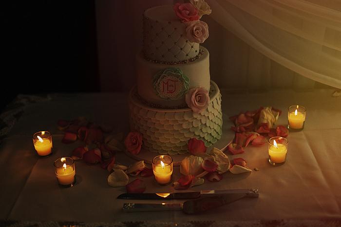 johan-and-maxine-wedding-549.jpg