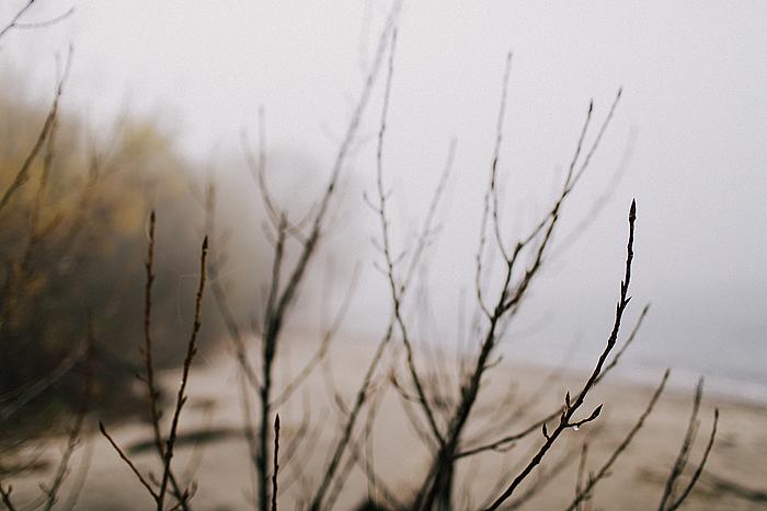 seaside-editorial-014.jpg