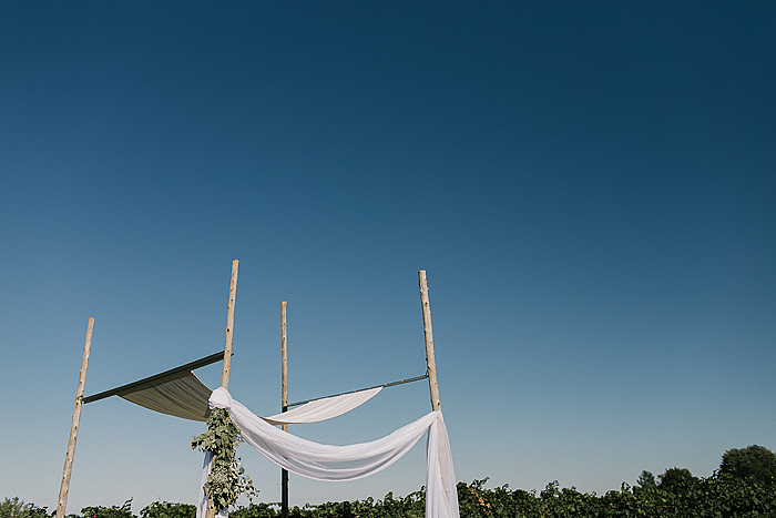matt-and-erin-vineyard-wedding-061.jpg