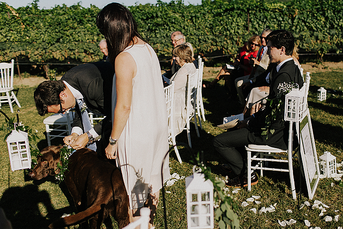 matt-and-erin-vineyard-wedding-162.jpg