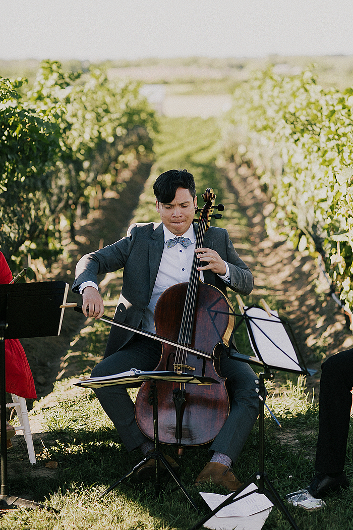 matt-and-erin-vineyard-wedding-186.jpg