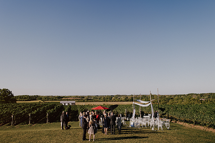 matt-and-erin-vineyard-wedding-206.jpg