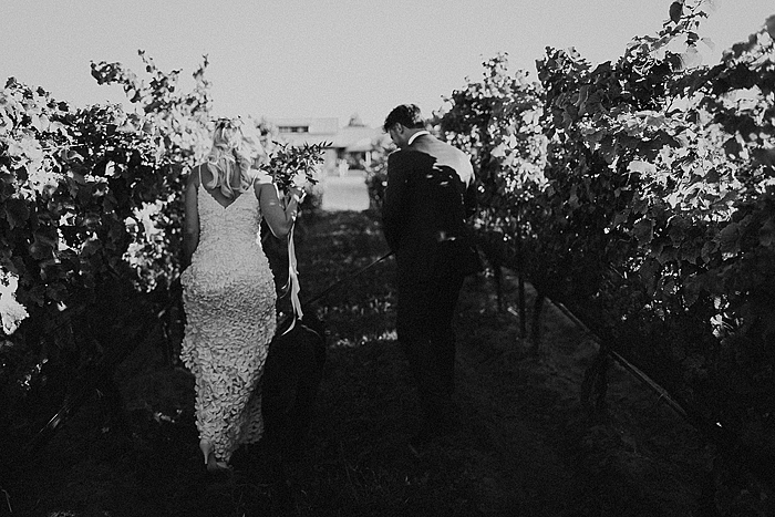 matt-and-erin-vineyard-wedding-245.jpg