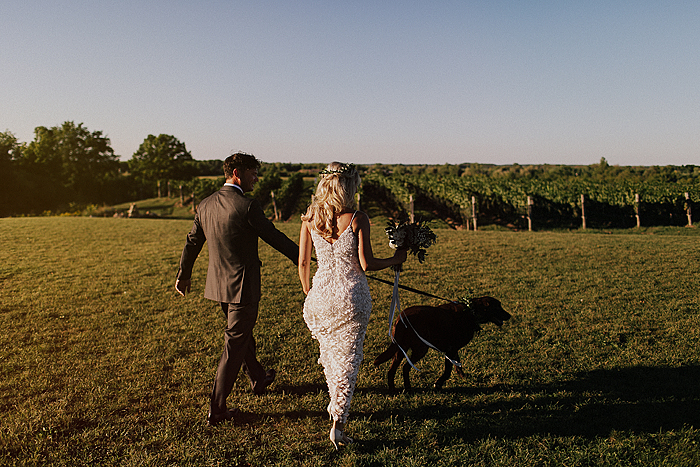 matt-and-erin-vineyard-wedding-240.jpg