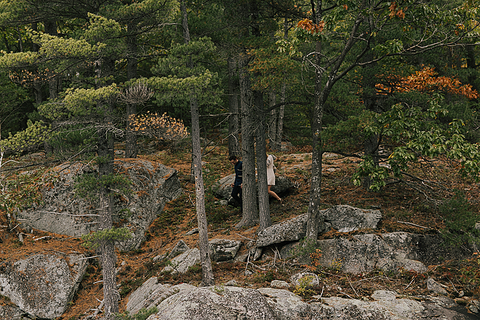 richelle-and-justin-muskoka-engagement-033.jpg
